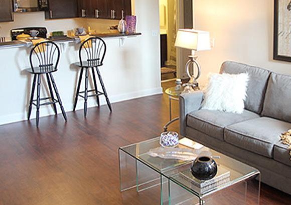 Ellicott City Apartment Living Room